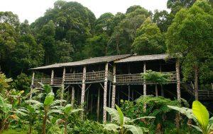Malezya-Kuching şehrinde doğa el değmemiştir