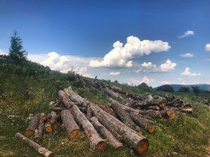 Güzel Bosna dağlarından