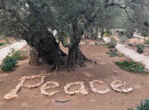 Kudüs Barış