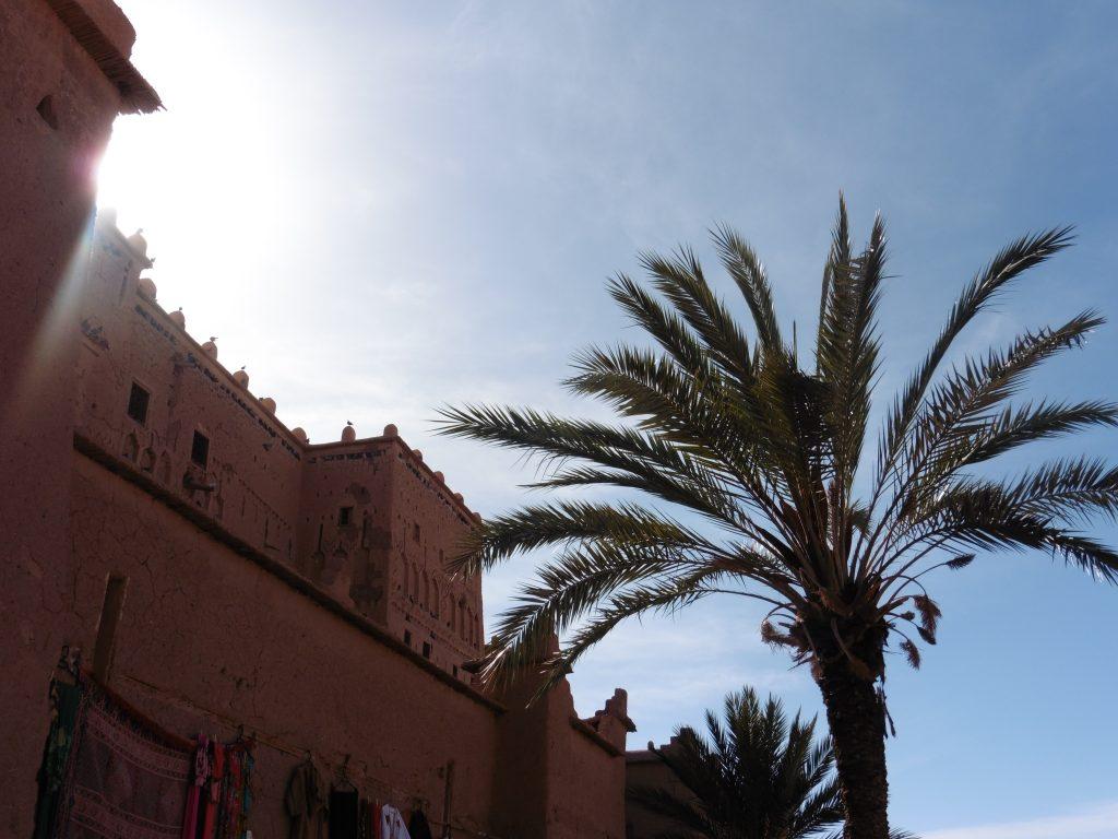 Fas'ın palmiye ağaçları ve tarihi mimari binaları